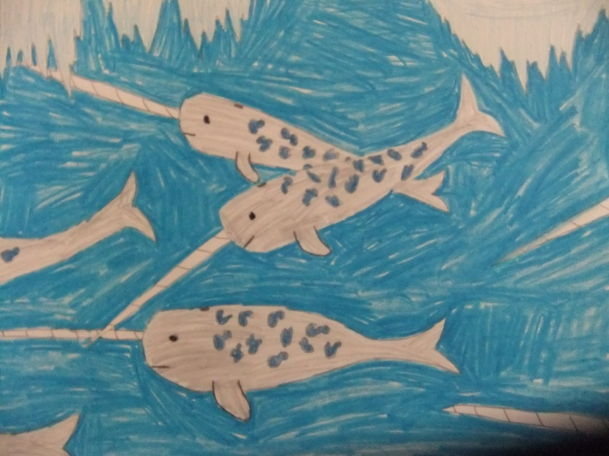 One Narwhal Sunday